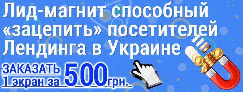 Лид-магнит способный «зацепить» посетителей Лендинга в Украине